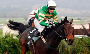 Horse-Racing 2